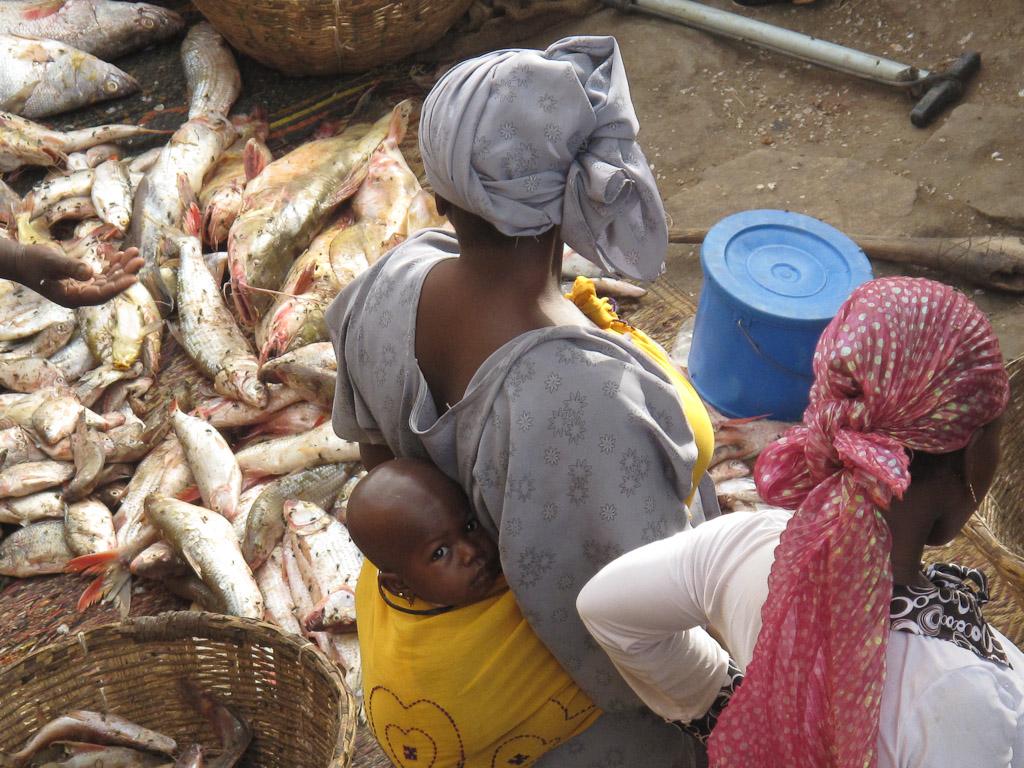 Venta Pescado mercado Mopti